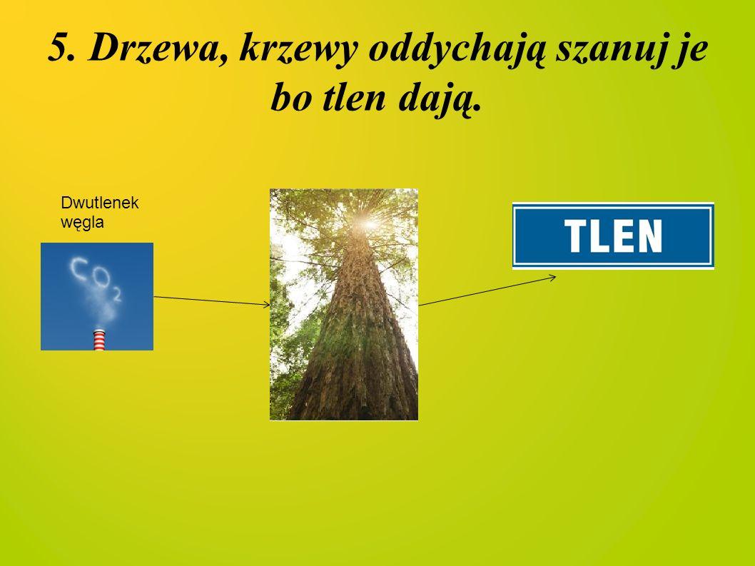 5. Drzewa, krzewy oddychają szanuj je bo tlen dają.