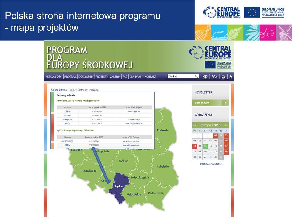 Polska strona internetowa programu