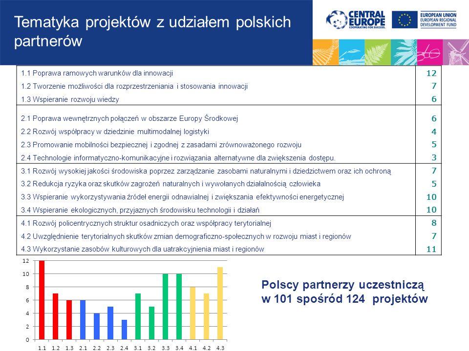 Tematyka projektów z udziałem polskich partnerów