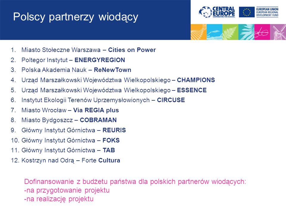 Polscy partnerzy wiodący