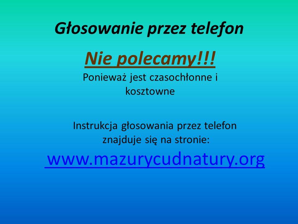 Głosowanie przez telefon