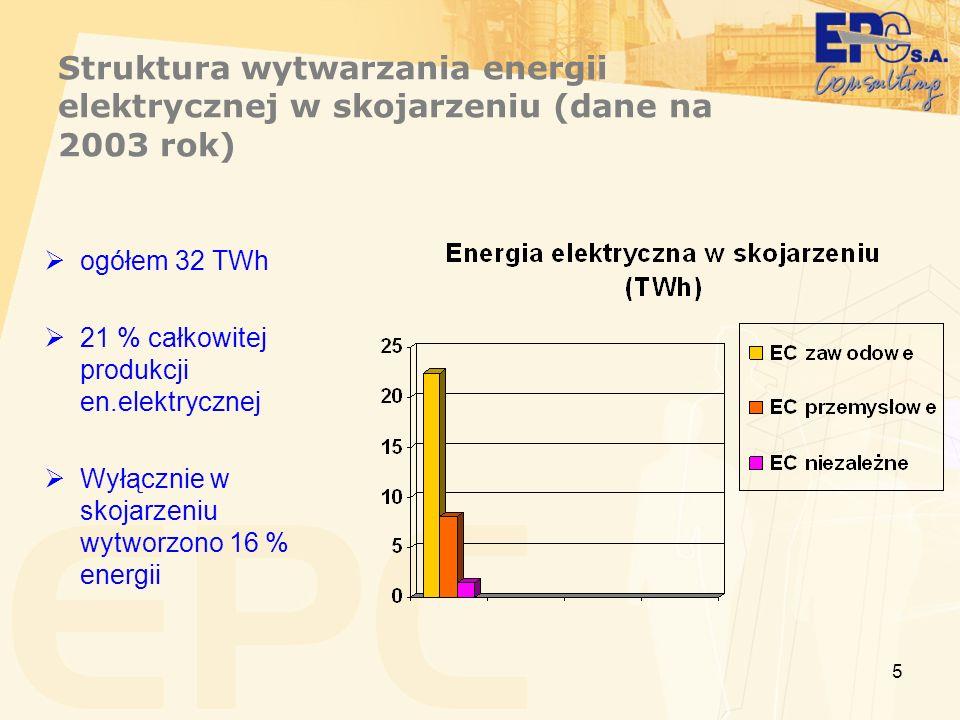 Struktura wytwarzania energii elektrycznej w skojarzeniu (dane na 2003 rok)
