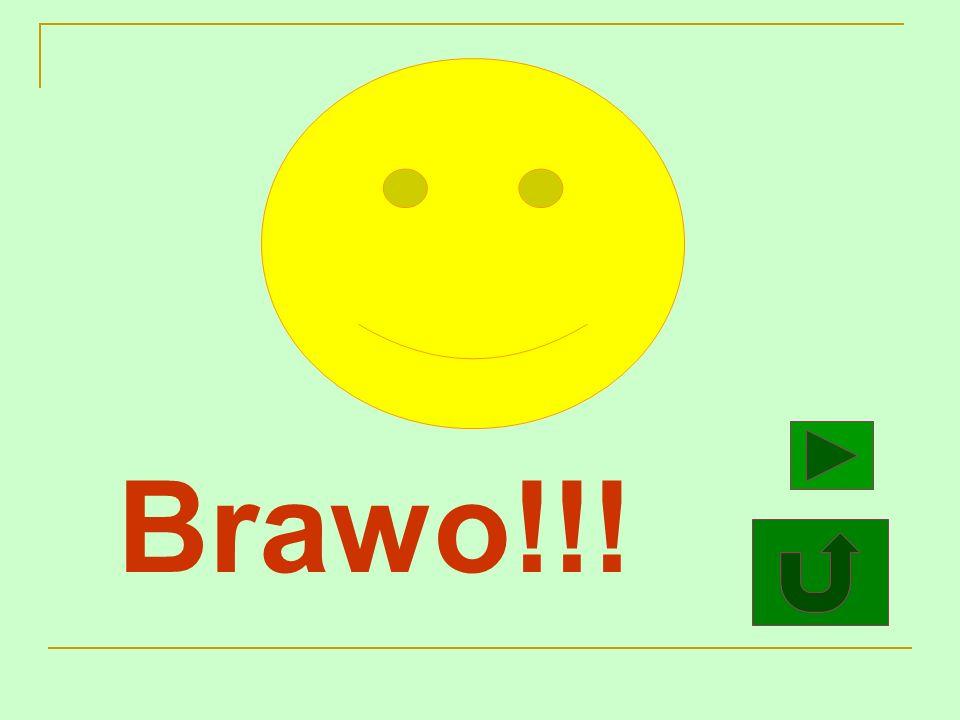 Brawo!!!