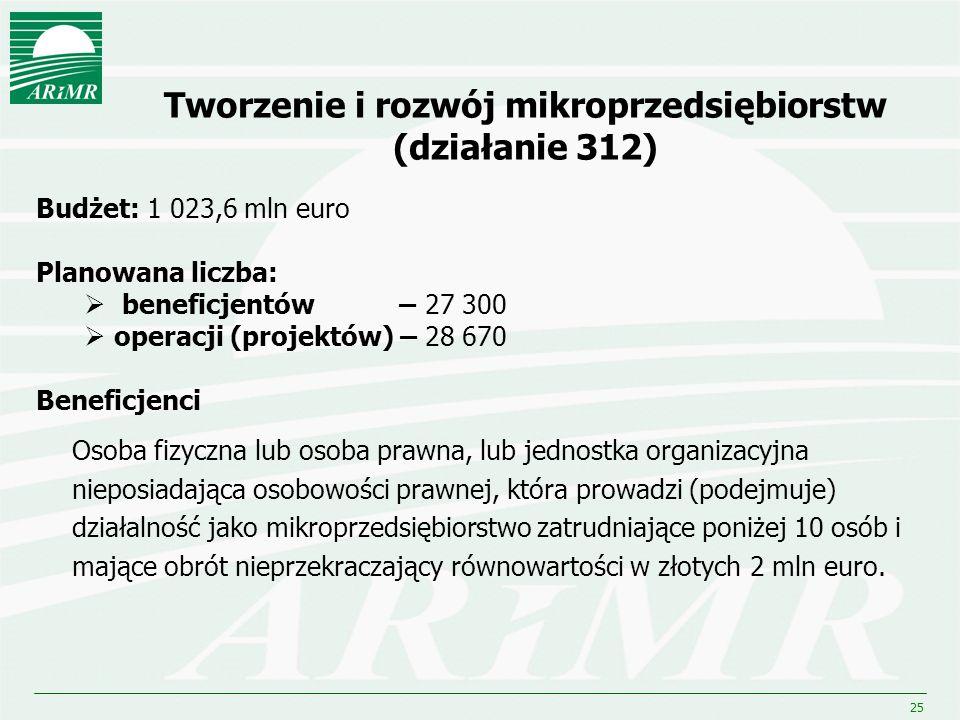 Tworzenie i rozwój mikroprzedsiębiorstw (działanie 312)