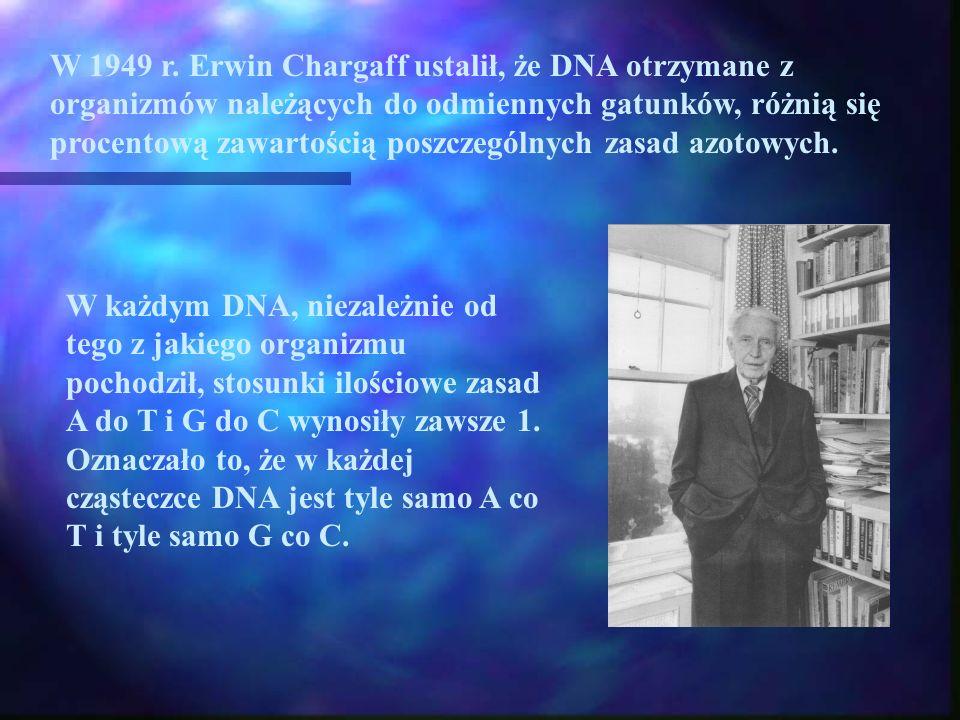 W 1949 r. Erwin Chargaff ustalił, że DNA otrzymane z organizmów należących do odmiennych gatunków, różnią się procentową zawartością poszczególnych zasad azotowych.