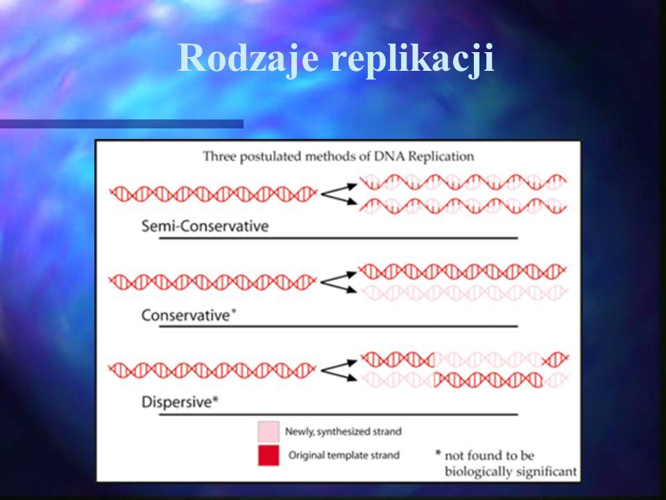 Rodzaje replikacji