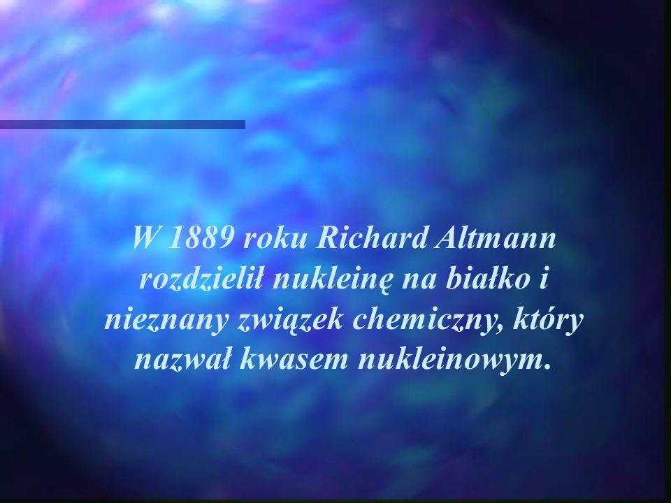 W 1889 roku Richard Altmann rozdzielił nukleinę na białko i nieznany związek chemiczny, który nazwał kwasem nukleinowym.