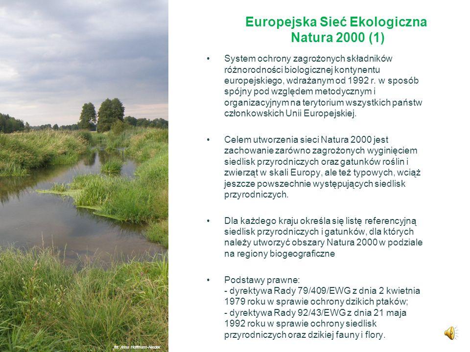 Europejska Sieć Ekologiczna Natura 2000 (1)