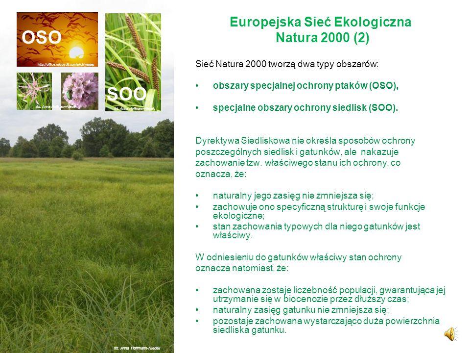 Europejska Sieć Ekologiczna Natura 2000 (2)