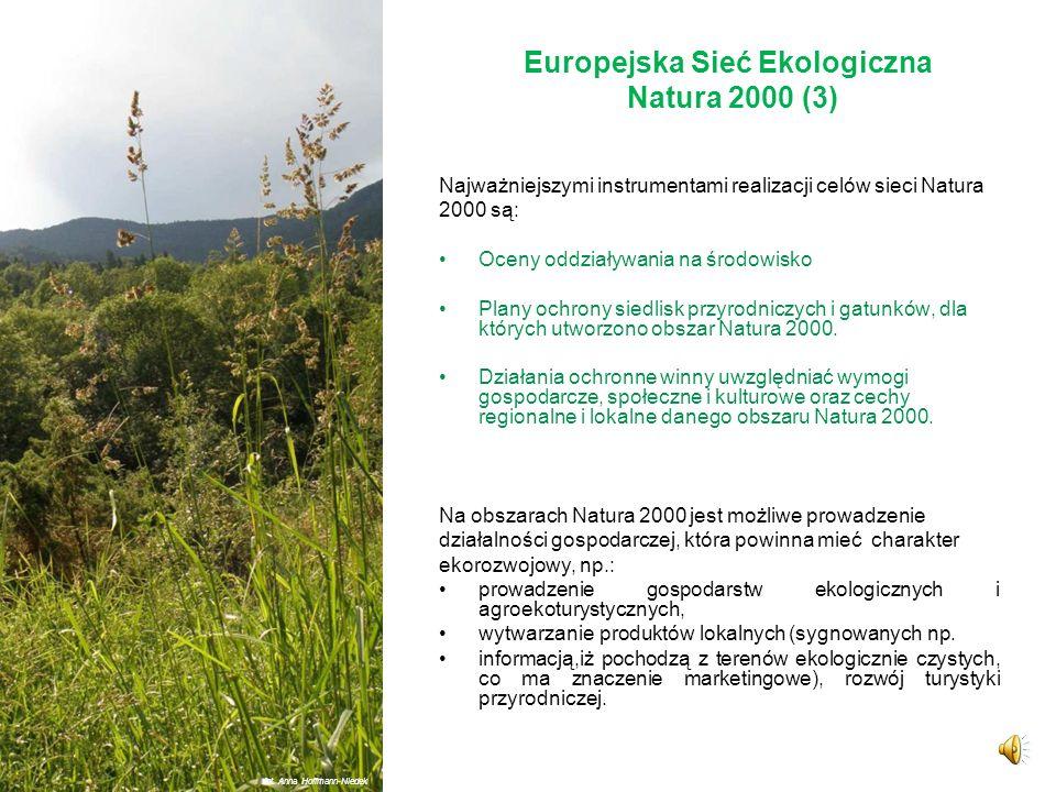 Europejska Sieć Ekologiczna Natura 2000 (3)