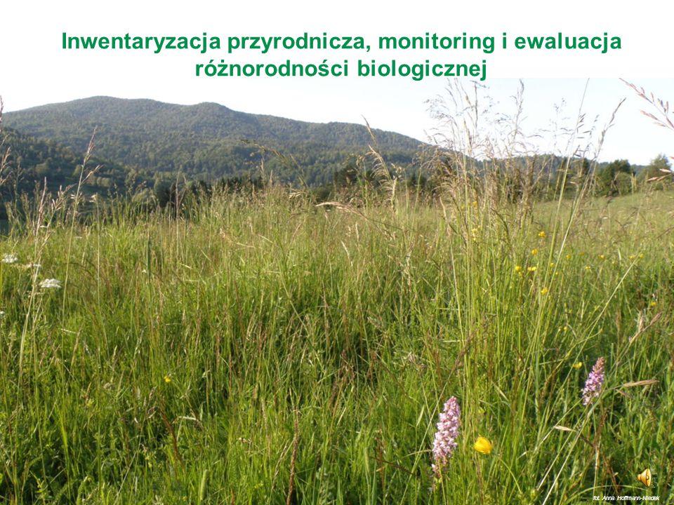 Inwentaryzacja przyrodnicza, monitoring i ewaluacja różnorodności biologicznej