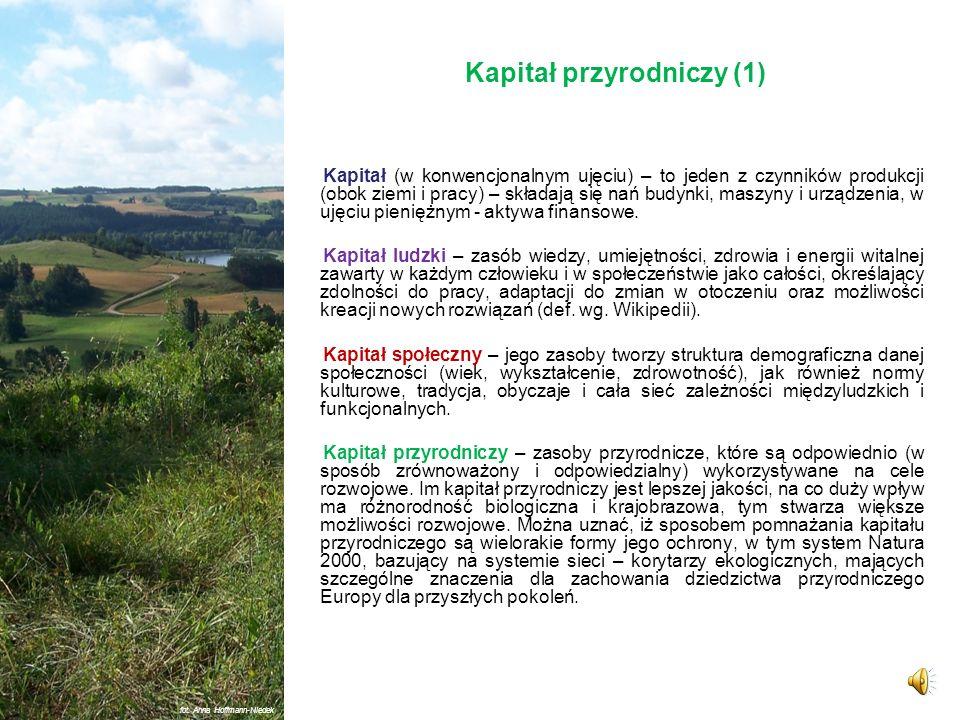 Kapitał przyrodniczy (1)