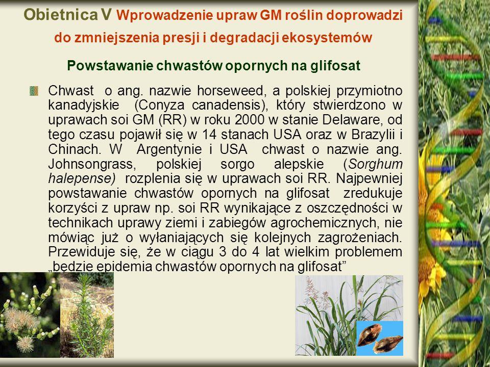 Obietnica V Wprowadzenie upraw GM roślin doprowadzi do zmniejszenia presji i degradacji ekosystemów Powstawanie chwastów opornych na glifosat