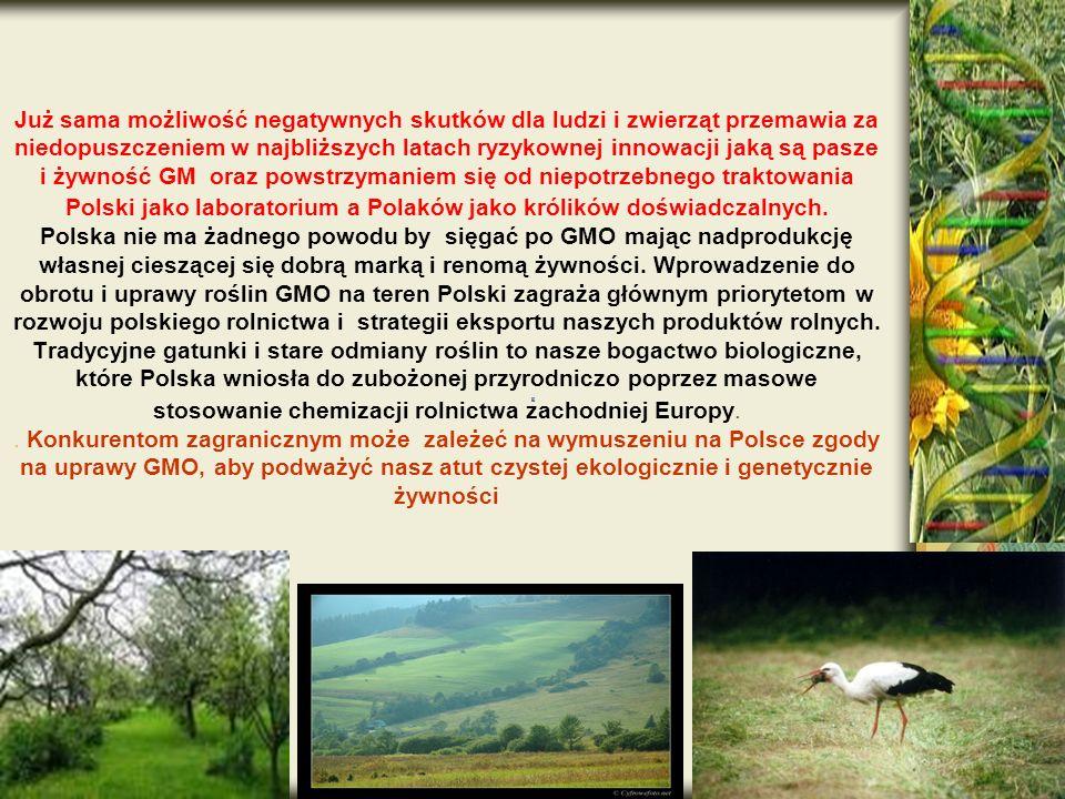 Już sama możliwość negatywnych skutków dla ludzi i zwierząt przemawia za niedopuszczeniem w najbliższych latach ryzykownej innowacji jaką są pasze i żywność GM oraz powstrzymaniem się od niepotrzebnego traktowania Polski jako laboratorium a Polaków jako królików doświadczalnych.