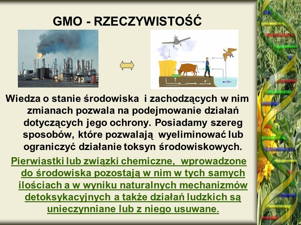 GMO - RZECZYWISTOŚĆ