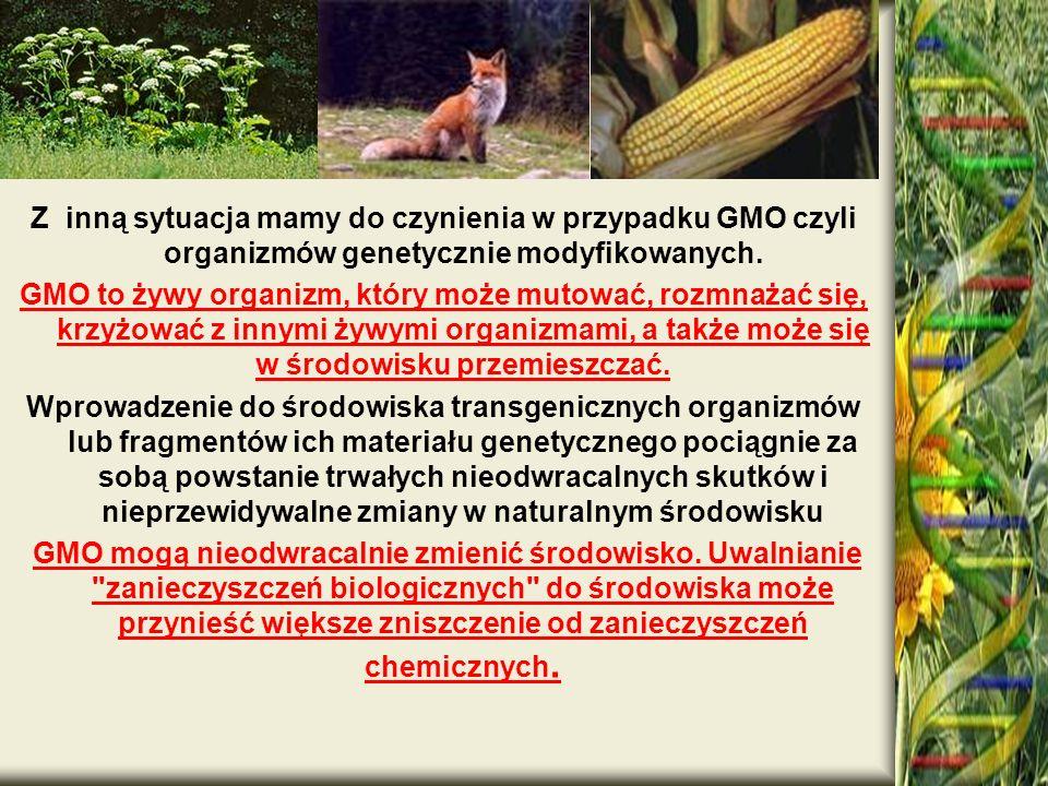 .Z inną sytuacja mamy do czynienia w przypadku GMO czyli organizmów genetycznie modyfikowanych.