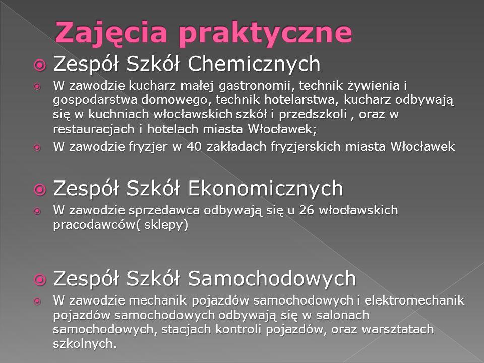 Zajęcia praktyczne Zespół Szkół Chemicznych Zespół Szkół Ekonomicznych