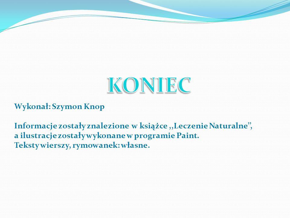 KONIEC Wykonał: Szymon Knop
