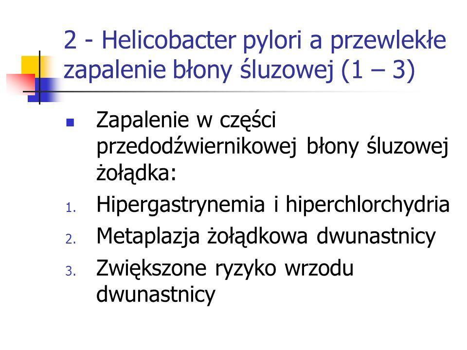 2 - Helicobacter pylori a przewlekłe zapalenie błony śluzowej (1 – 3)