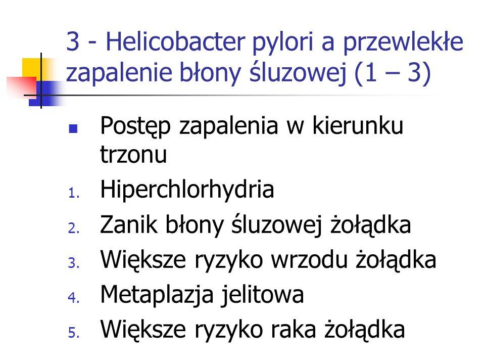 3 - Helicobacter pylori a przewlekłe zapalenie błony śluzowej (1 – 3)