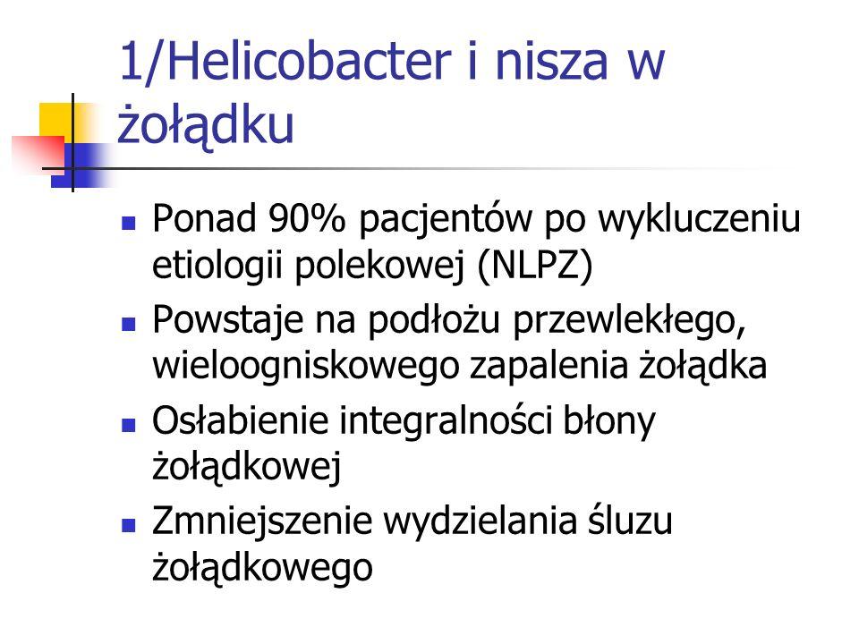 1/Helicobacter i nisza w żołądku