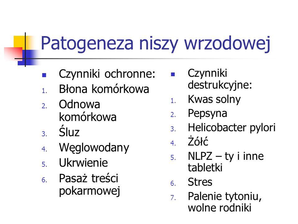 Patogeneza niszy wrzodowej