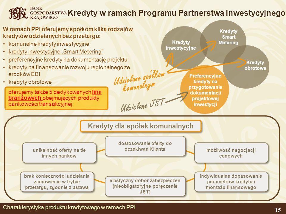 Charakterystyka produktu kredytowego w ramach PPI