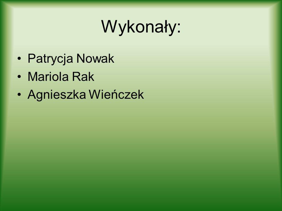 Wykonały: Patrycja Nowak Mariola Rak Agnieszka Wieńczek