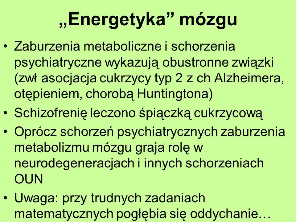 """Energetyka mózgu"