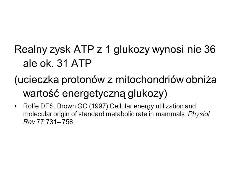 Realny zysk ATP z 1 glukozy wynosi nie 36 ale ok. 31 ATP