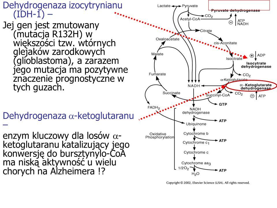 Dehydrogenaza izocytrynianu (IDH-1) –