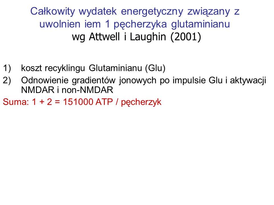 Całkowity wydatek energetyczny związany z uwolnien iem 1 pęcherzyka glutaminianu wg Attwell i Laughin (2001)