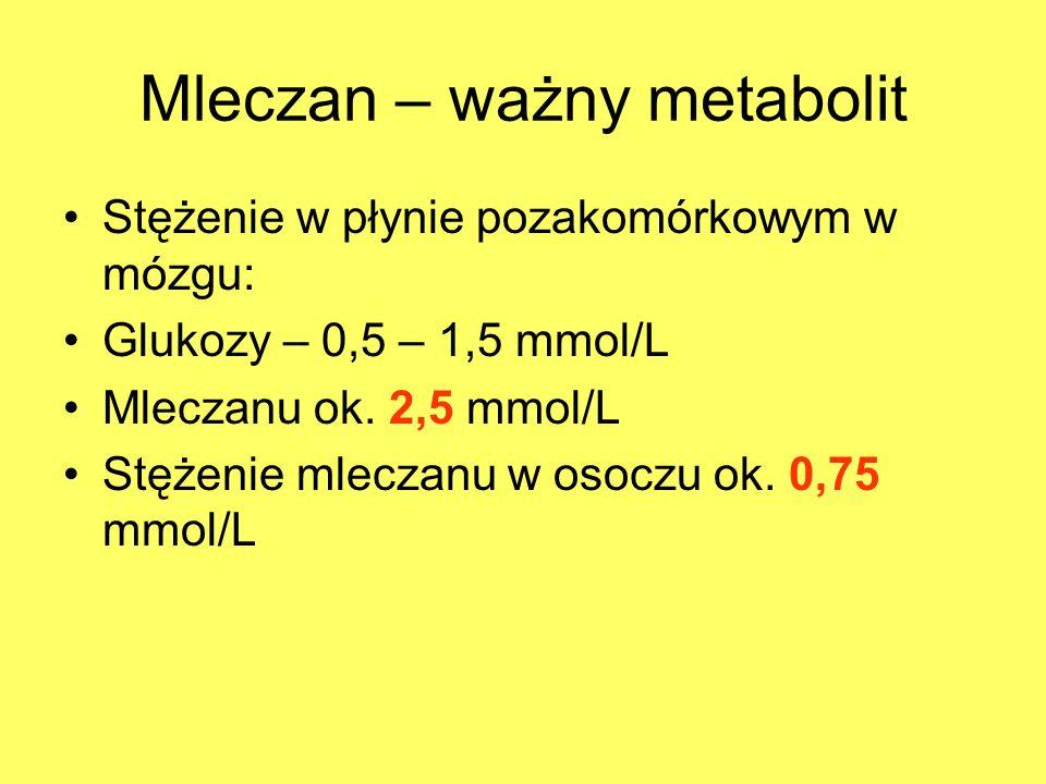 Mleczan – ważny metabolit