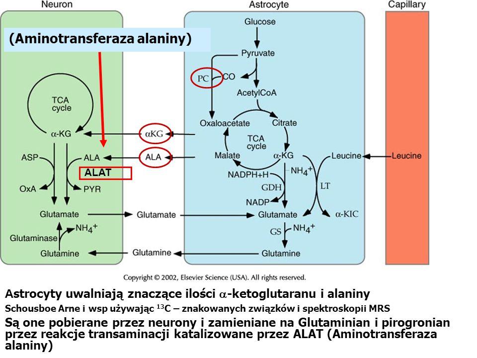 (Aminotransferaza alaniny)
