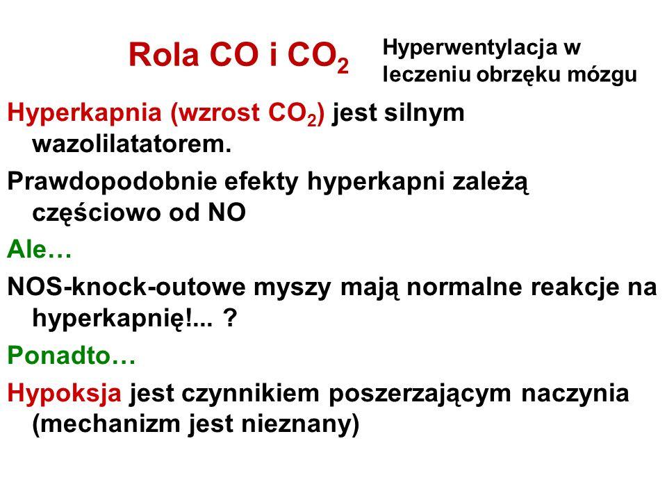 Rola CO i CO2 Hyperkapnia (wzrost CO2) jest silnym wazolilatatorem.