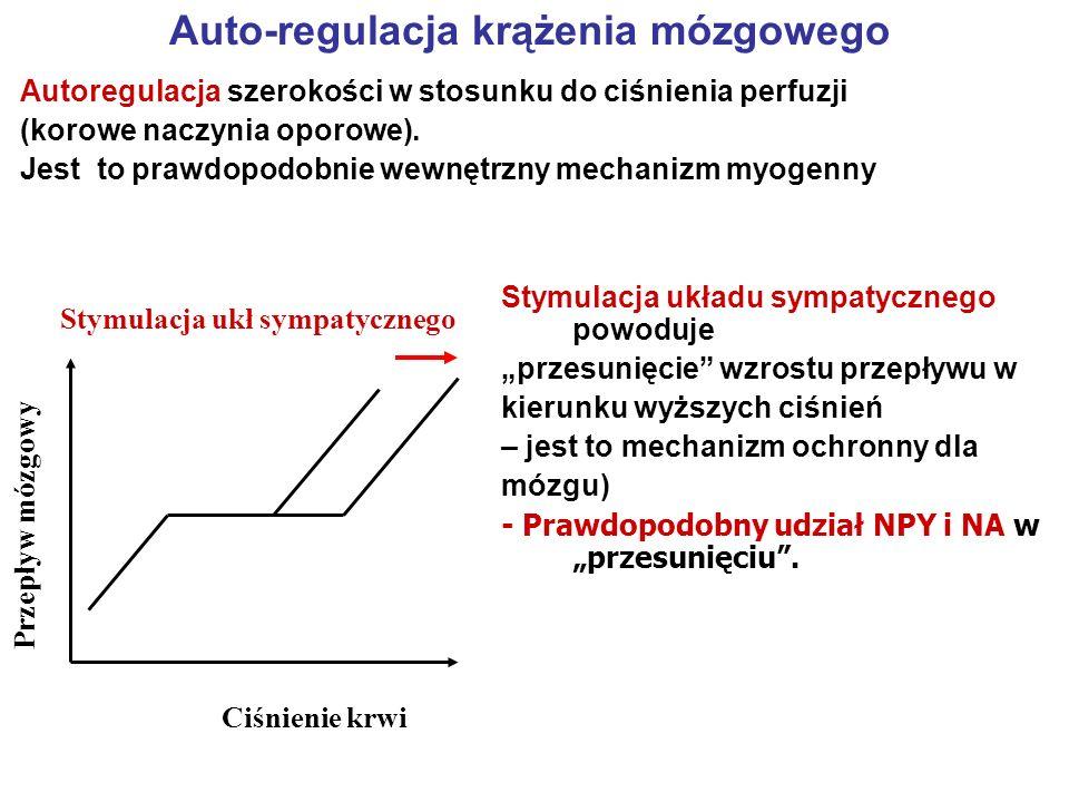 Auto-regulacja krążenia mózgowego