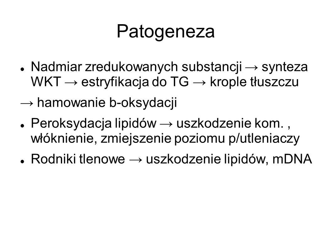 Patogeneza Nadmiar zredukowanych substancji → synteza WKT → estryfikacja do TG → krople tłuszczu. → hamowanie b-oksydacji.