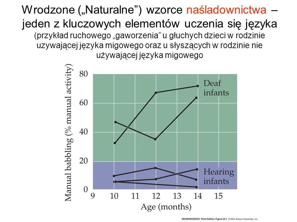 """Wrodzone (""""Naturalne ) wzorce naśladownictwa – jeden z kluczowych elementów uczenia się języka (przykład ruchowego """"gaworzenia u głuchych dzieci w rodzinie uzywającej języka migowego oraz u słyszących w rodzinie nie używającej języka migowego"""