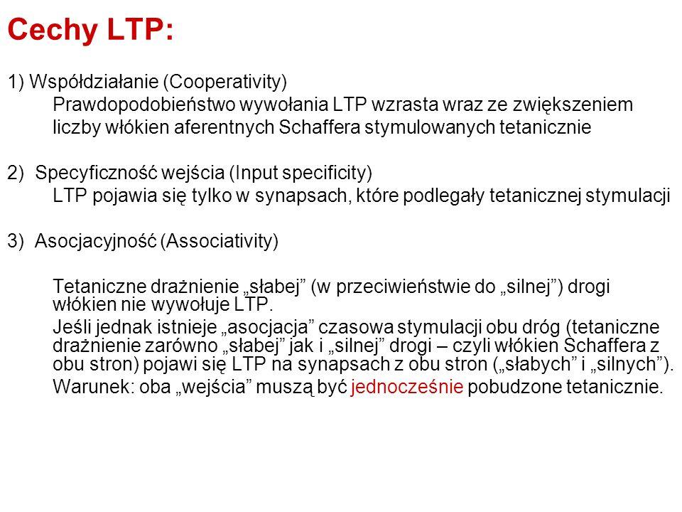Cechy LTP: 1) Współdziałanie (Cooperativity)