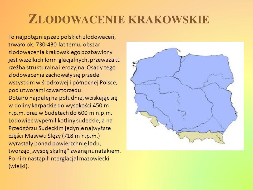 Zlodowacenie krakowskie