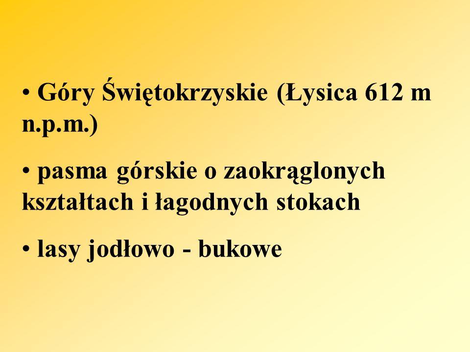 Góry Świętokrzyskie (Łysica 612 m n.p.m.)