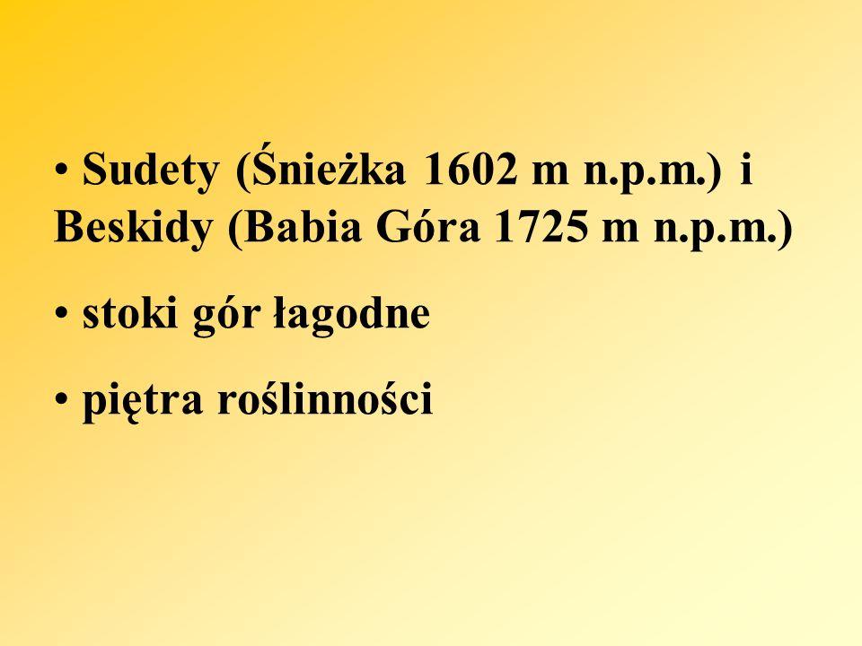 Sudety (Śnieżka 1602 m n.p.m.) i Beskidy (Babia Góra 1725 m n.p.m.)