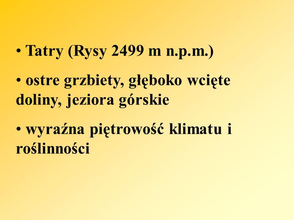 Tatry (Rysy 2499 m n.p.m.) ostre grzbiety, głęboko wcięte doliny, jeziora górskie.