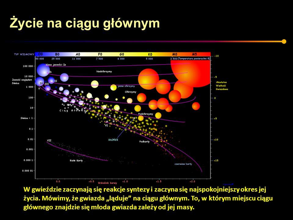 Życie na ciągu głównym W gwieździe zaczynają się reakcje syntezy i zaczyna się najspokojniejszy okres jej.