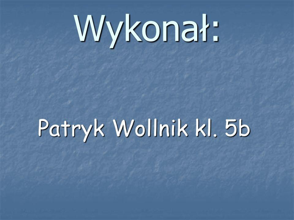 Wykonał: Patryk Wollnik kl. 5b