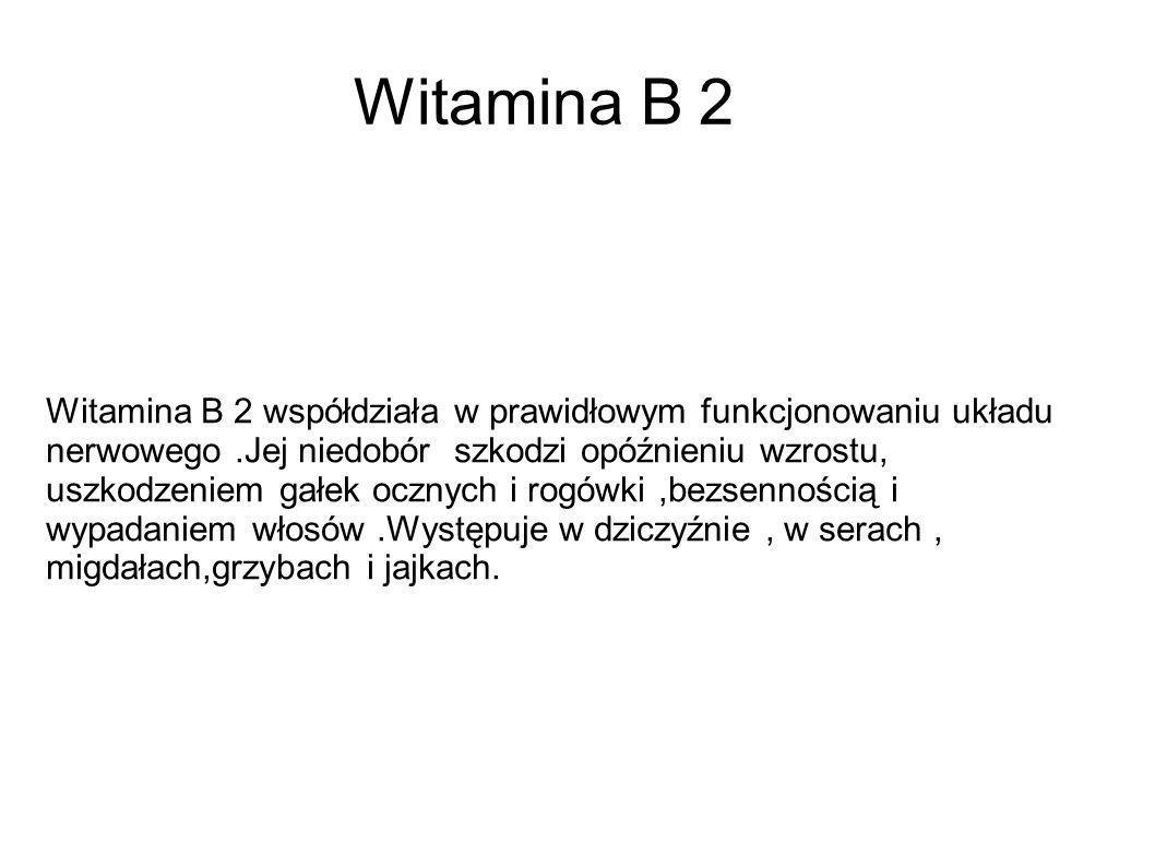 Witamina B 2