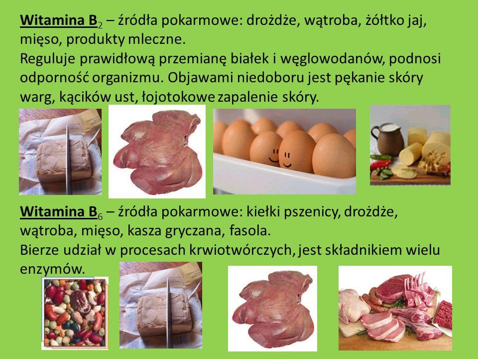 Witamina B2 – źródła pokarmowe: drożdże, wątroba, żółtko jaj, mięso, produkty mleczne. Reguluje prawidłową przemianę białek i węglowodanów, podnosi odporność organizmu. Objawami niedoboru jest pękanie skóry warg, kącików ust, łojotokowe zapalenie skóry.