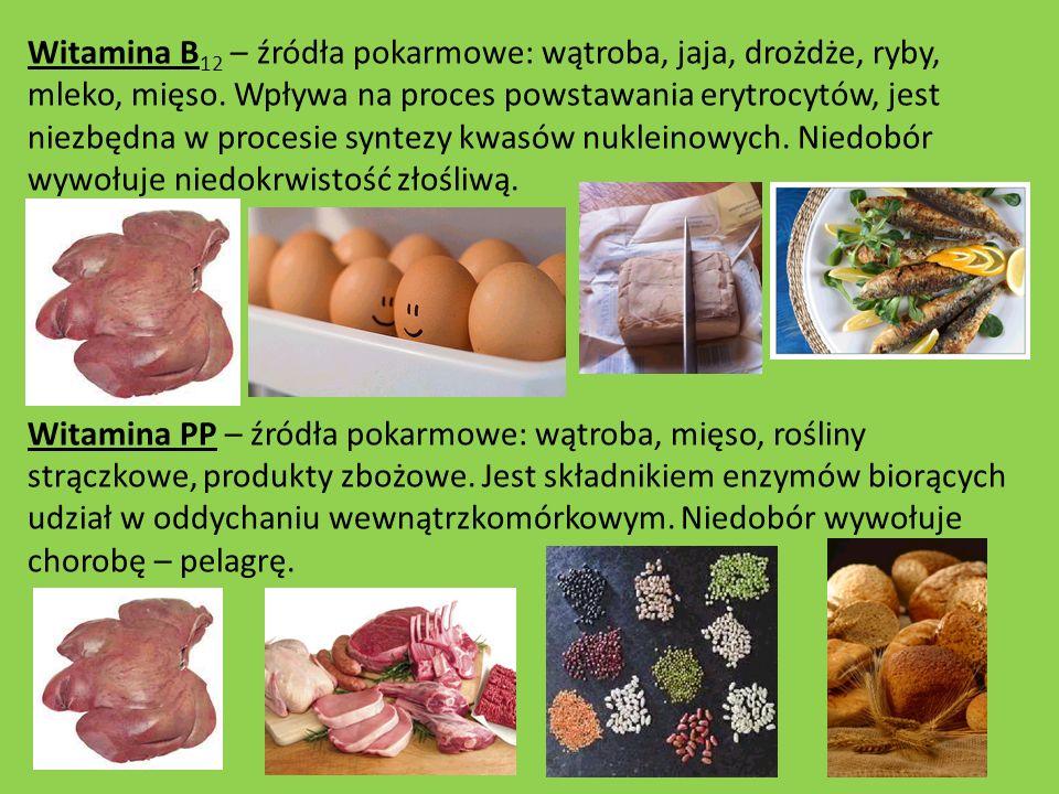 Witamina B12 – źródła pokarmowe: wątroba, jaja, drożdże, ryby, mleko, mięso. Wpływa na proces powstawania erytrocytów, jest niezbędna w procesie syntezy kwasów nukleinowych. Niedobór wywołuje niedokrwistość złośliwą.