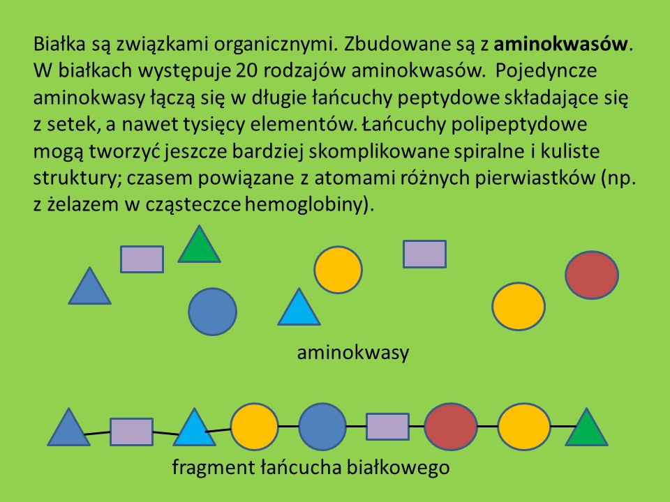 fragment łańcucha białkowego