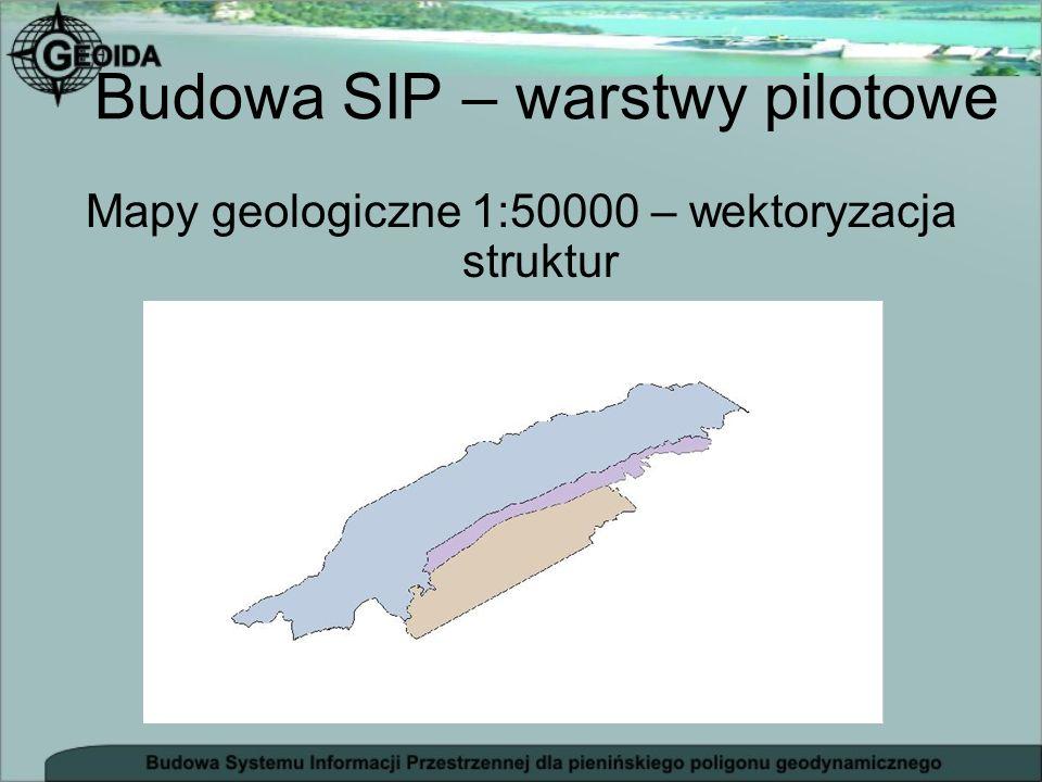 Budowa SIP – warstwy pilotowe